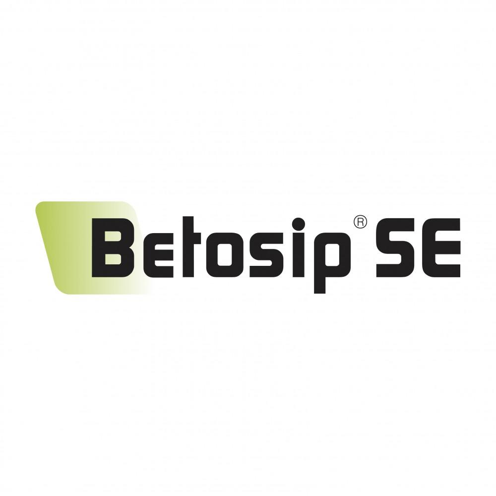 Betosip SE