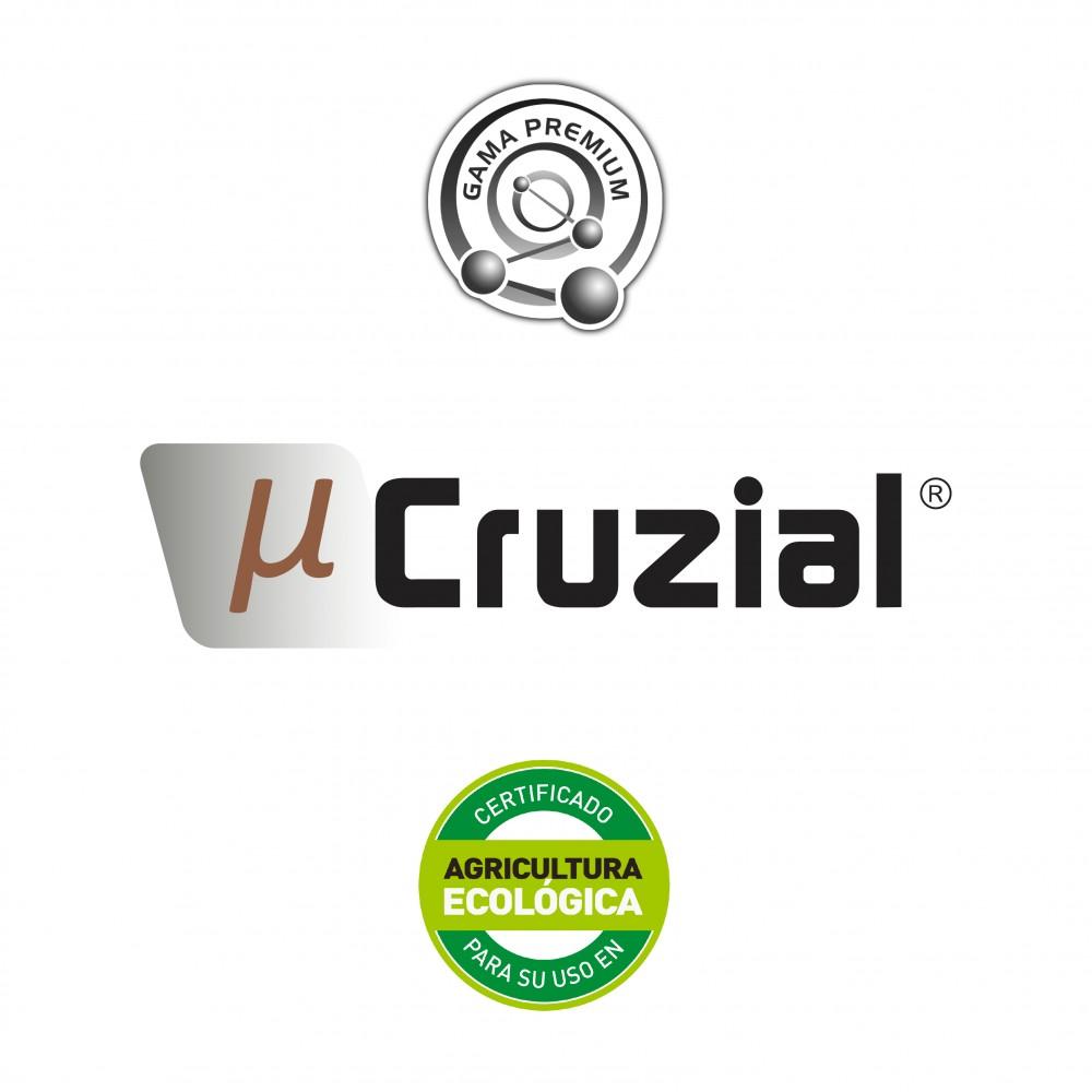 Stilo µ Cruzial