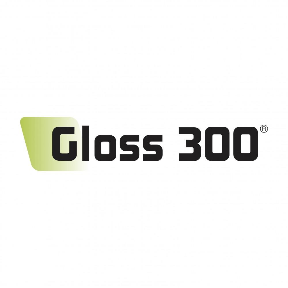 Gloss 300