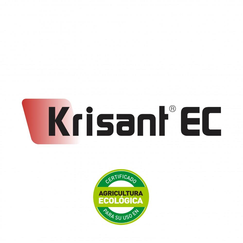Krisant EC