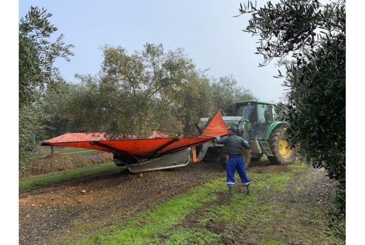Stilo Hydro: Mayor producción y rendimiento graso en tu olivar